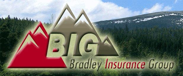 Bradley Insurance Group
